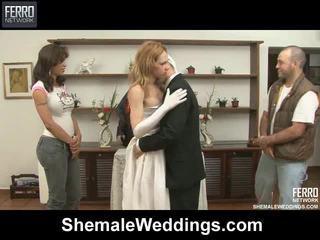 Sajaukt no kino līdz shemale weddings