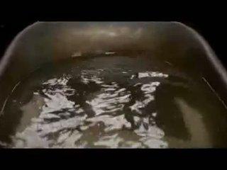 Eva green חם רטוב פטמות ו - תחת
