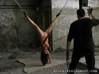 혼합 의 영화 로 잔인한 punishment