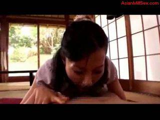 जापानी, अमरीकी तेंदुआ, पुराना