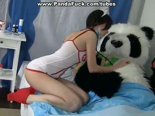 Reged bayan to cure a sick panda