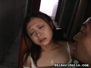 Aziatike porno porno movs nga shibari dolls