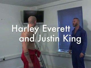 Harley everett và justin vua