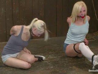 Ashley jane ally ann un princese donna daļa 1 no 4 no the november dzīvot izstāde