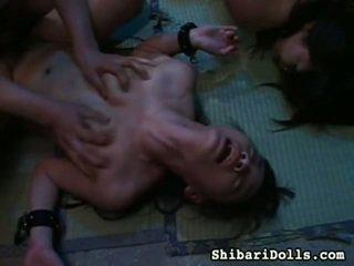 Sexy colección de gorda x calificación porno movs desde shibari dolls