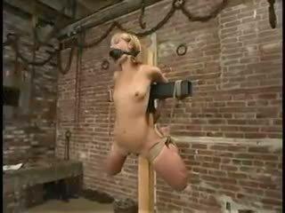Blondīne vergs strung augšup ar ropewhippedgaggedand vibra