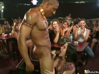 Blowjobs Everywhere: Free Dancing Bear HD Porn Video 67