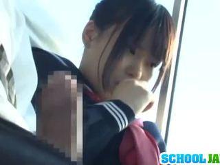 Público autocarro puts dela moth dentro o autocarro riders lap