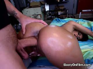 गधा, लैटिन, बड़े लंड