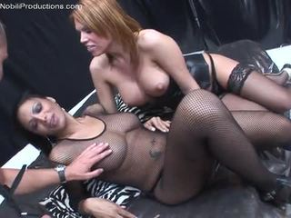 shemale sucked girl, stars shemale, pornpros shemale