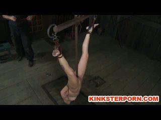 Bdsm maledom perverts vergs hailey jauns uz verdzība tortured beging par sperma