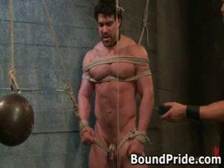 homo, suukapula, sidottu