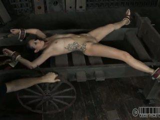 סקסי torment ל מתוק slaves