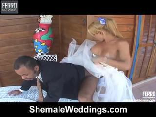 Famous Pornstars Andria, Patricia_sabatiny, Valore From Shemale Weddings Getting Dirty