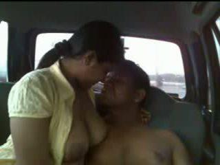naminis, automobilis, indijos