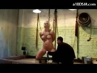 new torture, free bondage, maledom