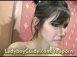 Sexy ladyboy in lingerie gets fucked from randy guy