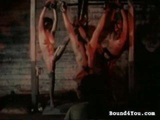 جودة عبودية, جديد مرتبطة المتابعة حار, أي bondaged