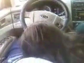 Boyfriend Sucked while Driving