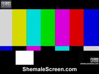 Heet shemale scherm film starring sharon, monique, agata