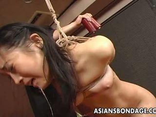 more japanese channel, fresh bdsm posted, bondage movie