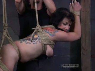 heetste seks tube, nieuw vernedering actie, voorlegging tube