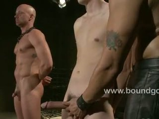 Ten inch cock tied to the cieling