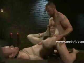 beste homo- tube, alle spier seks, groot leer neuken