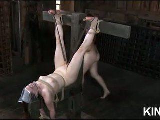 sex clip, all submission porn, bdsm film