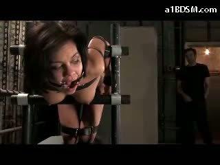 torture ideal, fun bizarre free, great bondage