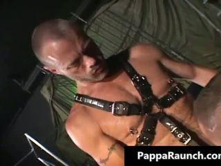 neuken, homo- kanaal, vers anus