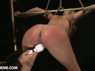 beste kaukasisch porno, nieuw piercings, nieuw pijpbeurt mov