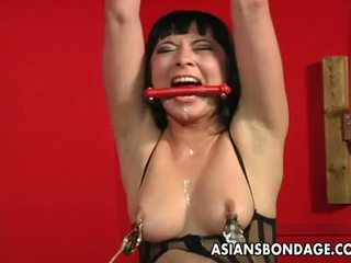 watch cute, big boobs great, hot tied up more