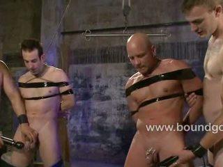 homo-, spier klem, echt homp