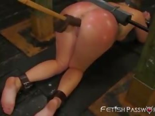 hole action, new babe film, more doggy style