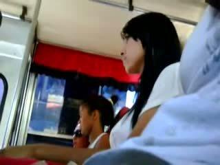 sự thủ dâm, xe buýt, flasher