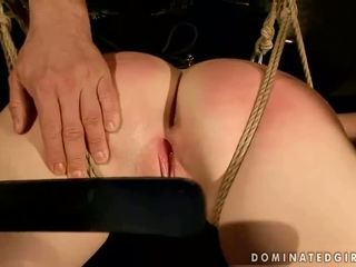 fresh brunette you, you blowjob fun, any humiliation more