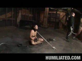 humiliation, bdsm, bondage