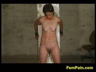 sāpes, dominatrix, vid2c