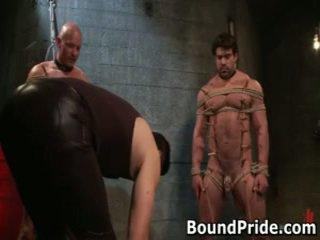 homosexuál, roubík, vázaný