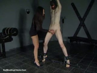 Slapping пеніс і ballbusting катування пеніса та яєць