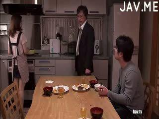 μελαχροινή, ιαπωνικά, γάιδαρος