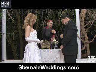 Blande av alessandra, engel, senna av shemale weddings