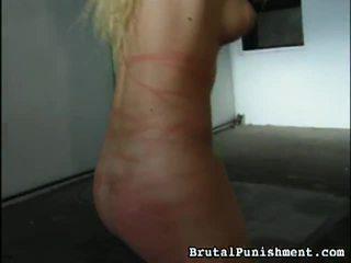 Malaki koleksyon ng bdsm pornograpya klips from malupit punishment