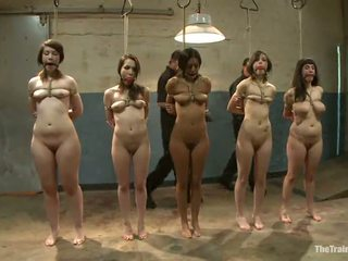 Sexy females ha deres vags toyed i en kinky sadism film
