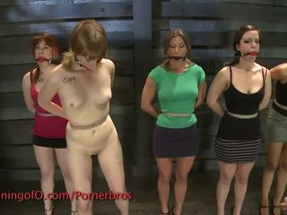 Five sluts trained to behave
