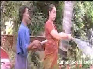 শ্যামাঙ্গিনী, বড় গাধা, ভারতীয়