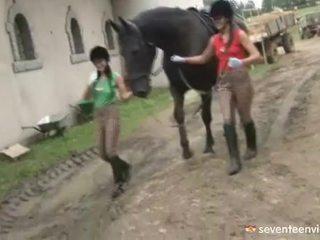 Lesbiete tīņi iekšā the stable