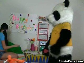 Panda gets jauns pusaudze skaistule