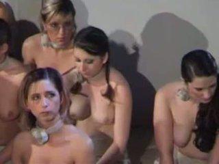 spanked, kız, göt